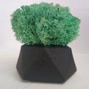 Кашпо Черный Алмаз со мхом цвета Изумруд