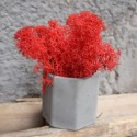 Кашпо Бочка со мхом красного цвета