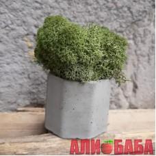 Кашпо Бочка со мхом зеленого цвета