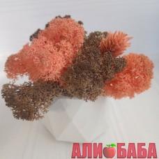 Кашпо Грани со мхом розовый и коричневый