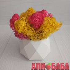 Кашпо Грани со мхом желтый и розовый