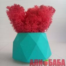 Кашпо Голубые Грани со мхом красного цвета