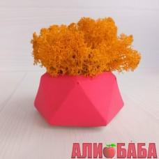 Кашпо Розовый Алмаз со мхом цвета Осенний