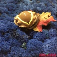Синий ЛАЗУРНЫЙ стабилизированный мох ягель
