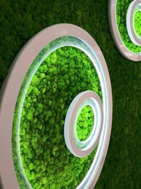 стабилизированный мох зеленый травяной
