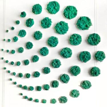 стабилизированный мох зеленый Изумрудный