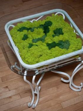 стабилизированный мох зеленый весенний